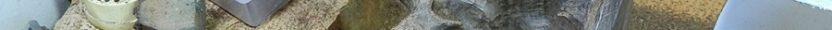 Pounamu Weta Sculpture – wip #10