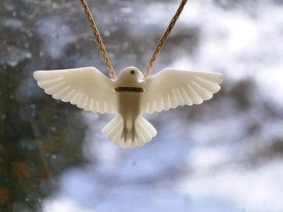 Commission a NZ Falcon