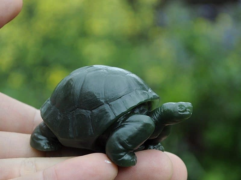 jade tortoise
