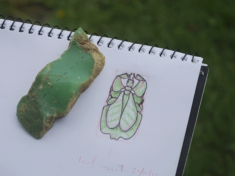 chrysoprase leaf insect